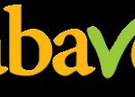 """IX Reunião Anual da ABAVE – """"O Plano Nacional de Educação e a Avaliação"""""""